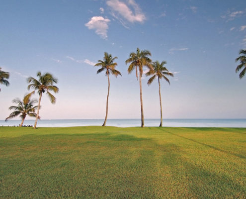 Vacant Lots For Sale Florida